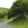 Fairy Glen Uig Skye - 05