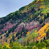 Telluride Colorado | Fall Colors | 2011  | SWCO # 002