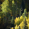 Chair Lift in Telluride Colorado | Fall 2011 | SWCO # 003