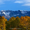 San Miguel range | near Ophir Colorado | Fall 2011 | SWCO # 011