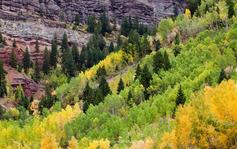 Telluride Box Canyon | Fall Colors | 2011 Telluride Colorado | SWCO # 001