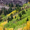 Telluride Box Canyon | Fall Colors | 2011 Telluride Colorado | SWCO # 001