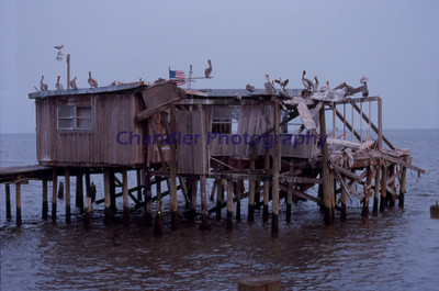 Prime property at Cedar Key, Florida. I know, I know, it has nothing to do with Michigan, I'm one of those snow birds they talk about in Florida.