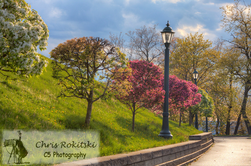 A sidewalk in Green Tree (in/near Pittsburgh, PA).  Beautiful trees line the sidewalk in this borough.  I took this photo during the spring to capture the full blooms on each tree.  The sun was peeking in and out of the clouds creating an interesting sky that was a little dark, but still full of color.