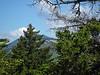 <center>Mount Hedgehog Hike -- 16 May 2010<br>AMC Boston Chapter<br><br><b><u>Hidden Peak  </u></b><br><br>Mt. Passaconaway remained hidden behind some evergreens.  </center>