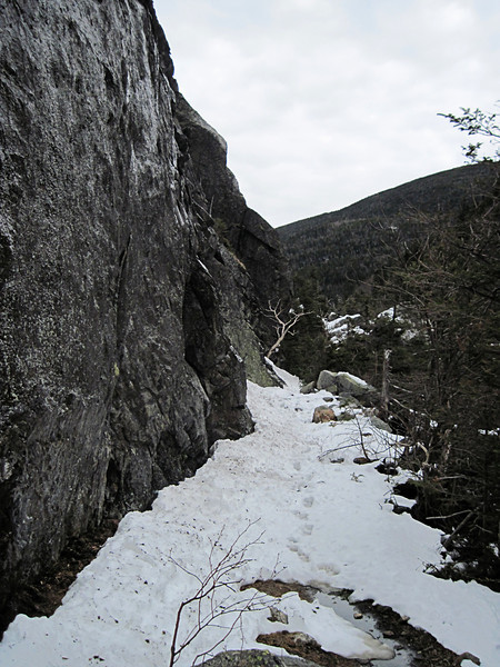 <center>Mount Lafayette Hike -- 1 May 2010<br>New England Over 50 Hiking Group<br><br><b><u>Eagle Cliff  </u></b><br><br>The Greenleaf Trail enters the notch along Eagle Cliff before ascending to the shoulder of Mt. Lafayette.  <br><br>Franconia Notch, New Hampshire</center>