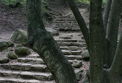Steps to Nojoqui Falls