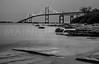 The Newport Bridge, from Jamestown, RI.  0697
