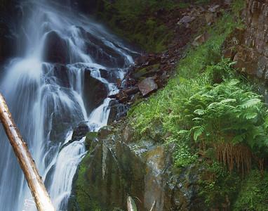 Ross Creek - Kootenai National Forrest -  Montana