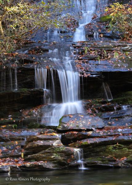 Tom Branch Falls