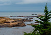 Ocean View from Point Lobos