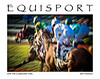 """Posterized : Horse Racing Photos and Equestrian Prints for sale from EquiSport Photos. ANY PRINT in the """"Scenic & Sales"""" can be ordered from this site as a PRINT, CANVAS, or LICENSED IMAGE, and shipped directly to you.  CLICK the """"Buy this photo"""" basket above the feature photo. Or CLICK..Contact Us"""