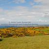 Carrick Hills Ayr - 01