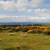 Carrick Hills Ayr - 04