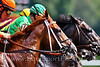 Racing & Paddock : Horse Racing Photos and Equestrian Prints for sale from EquiSport Photos.