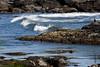 <center>Surf's Up <br><br>Sachuest Point National Wildlife Refuge<br>Middletown, RI</center>