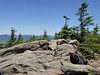 <center>Summit of Sandwich Dome <br><br>Sandwich Dome, New Hampshire</center>
