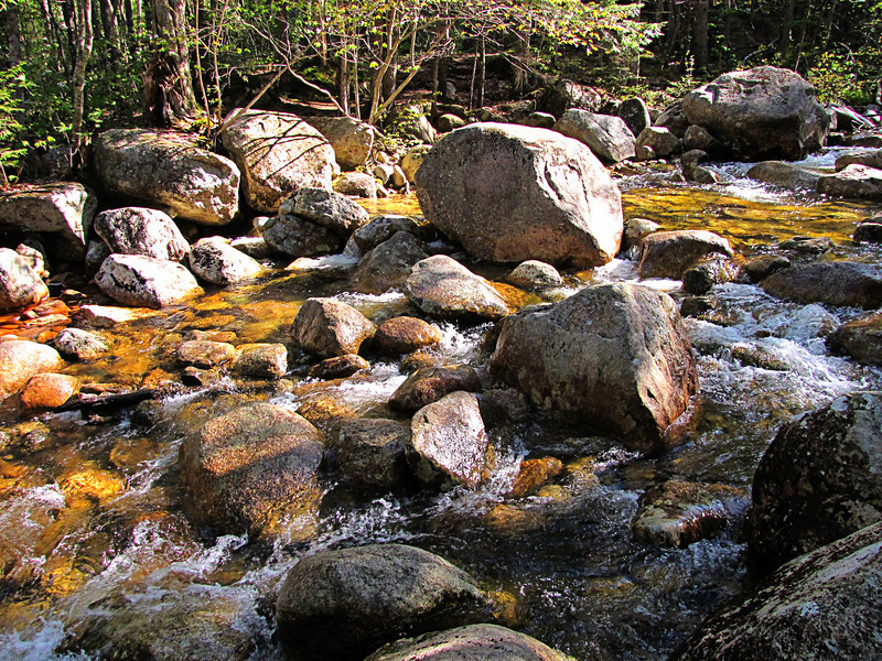 <center>Drake Brook <br><br>Sandwich Dome, New Hampshire</center>
