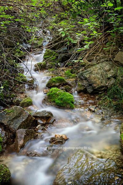 Dead Horse Creek 006 | Colorado