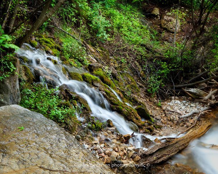 Dead Horse Creek 002   Colorado