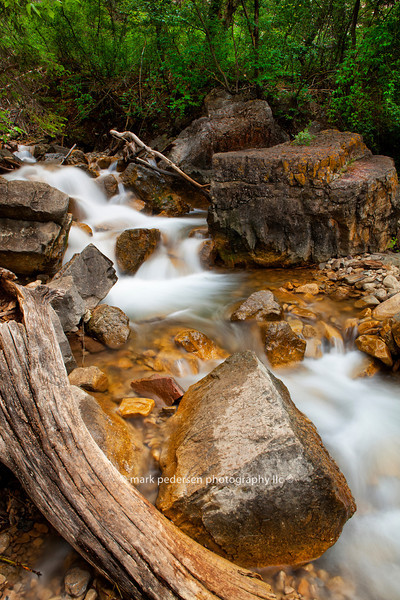Dead Horse Creek 007 | Colorado