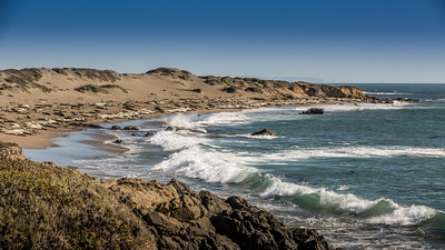 Elephant Seal Rookery at Piedras Blancas