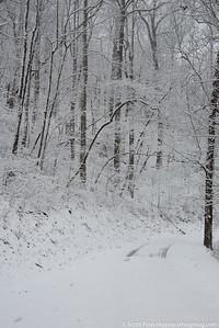 snow030316lg-8311