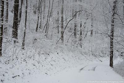 snow030316lg-8314