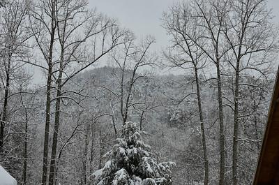 snow021114a-14796