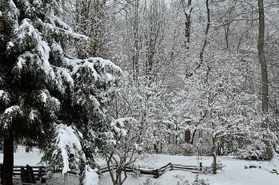 snow021114a-14785