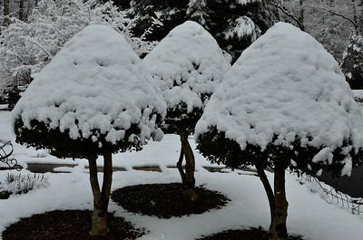 snow021114a-14777