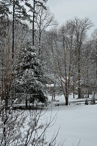 snow021114a-14783
