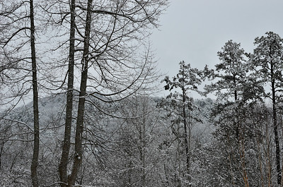 snow021114a-14786