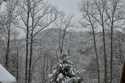 snow021114a-14795
