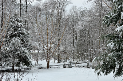 snow021114a-14782
