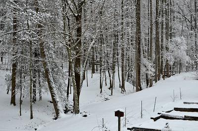 snow021114a-14790
