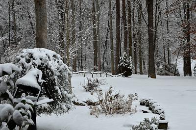 snow021114a-14789