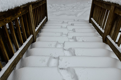 snow021114a-14797