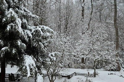 snow021114a-14784