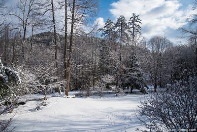 snowjan23lg-7212
