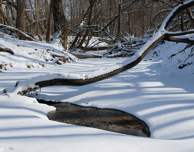 snow and a woodland creek