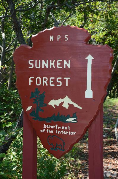 Sunken Forest, Sailors Haven