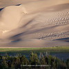 The Great Sand Dunes | 018