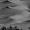 The Great Sand Dunes | 027