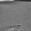 The Great Sand Dunes | 002