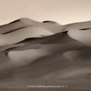 The Great Sand Dunes | 008