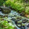 Utah Mountain Stream