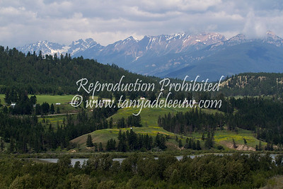 Wilmer viewed from Eagle Ranch, BC. July 2012