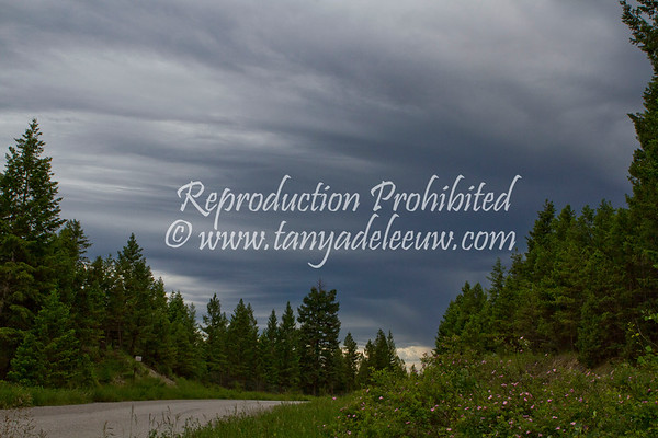 A storm looms over the Columbia Valley. June 2011.