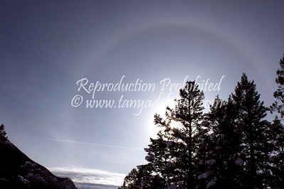 Winter sundog. Invermere 2010